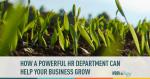 HR, Business Development, Company Growth