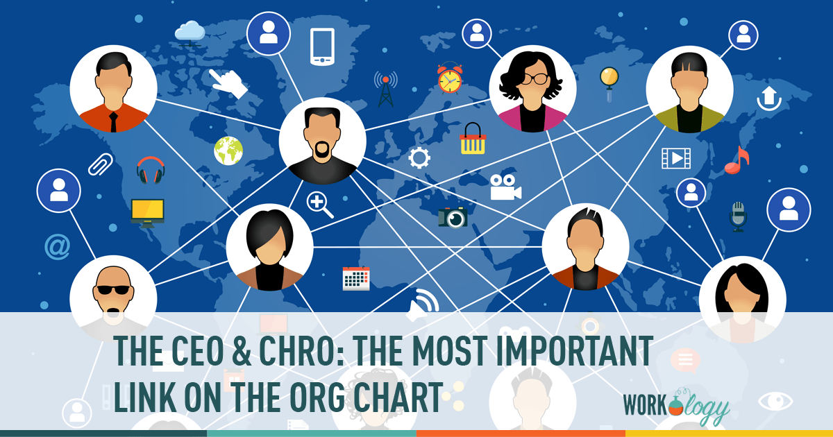 org chart, ceo, chro,