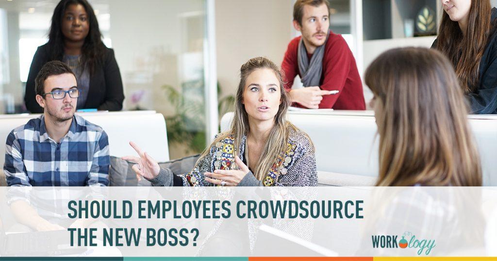 crowdsource, leadership