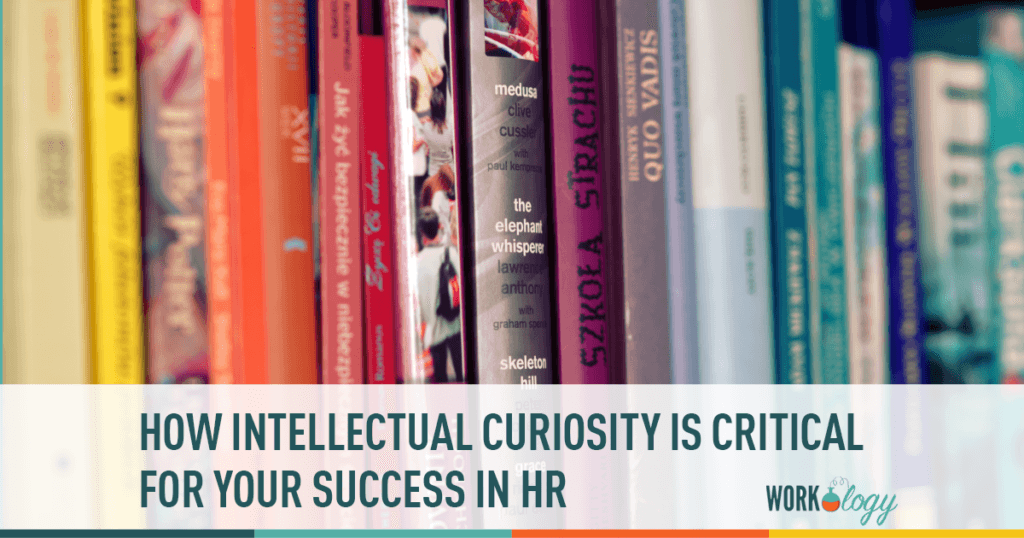 intellectual curiosity, critical hr skills, skills in human resources