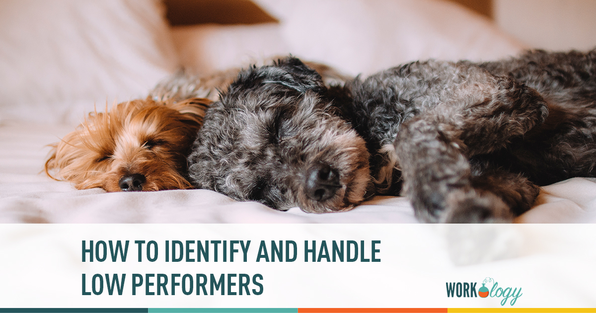 how to identify and handle low performers