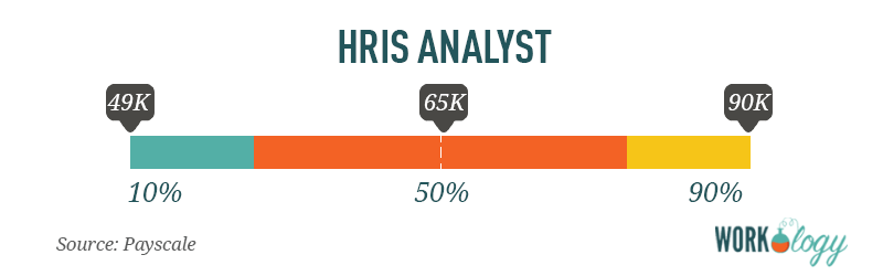 hris analysts human resources informaiton systems