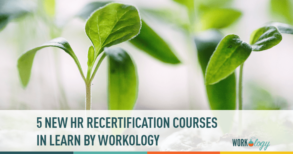5 new HR recertification courses in LEARN by Workology