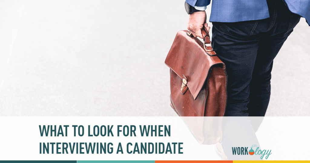 what to look for when interviewing a candidate